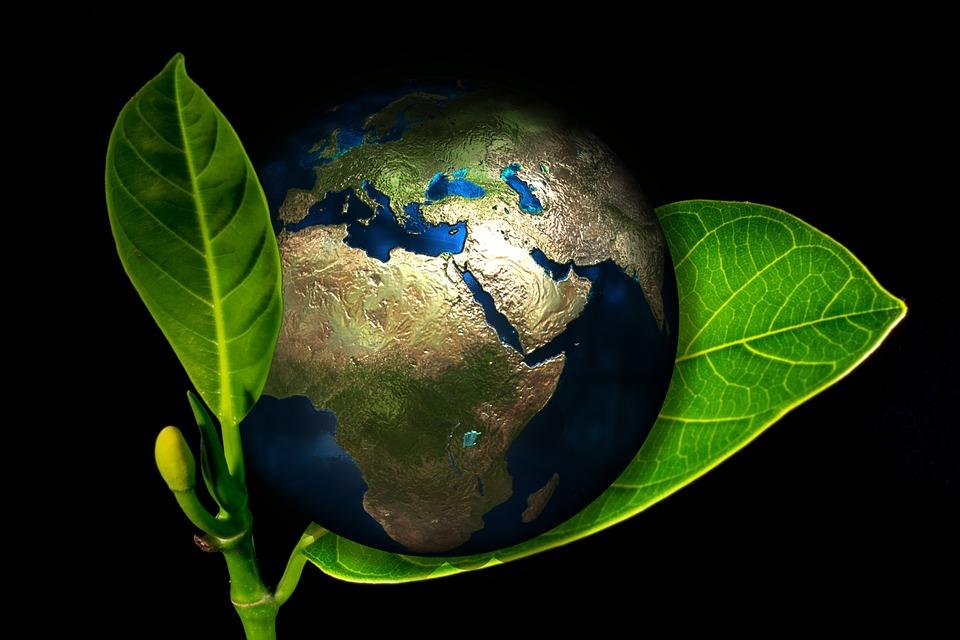 Українців запрошують стати учасниками конкурсу ClimateLaunchpad