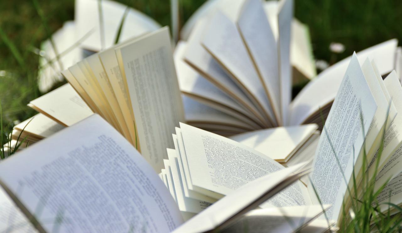 Видавництво зі Львова надало книги у 52 бібліотеки