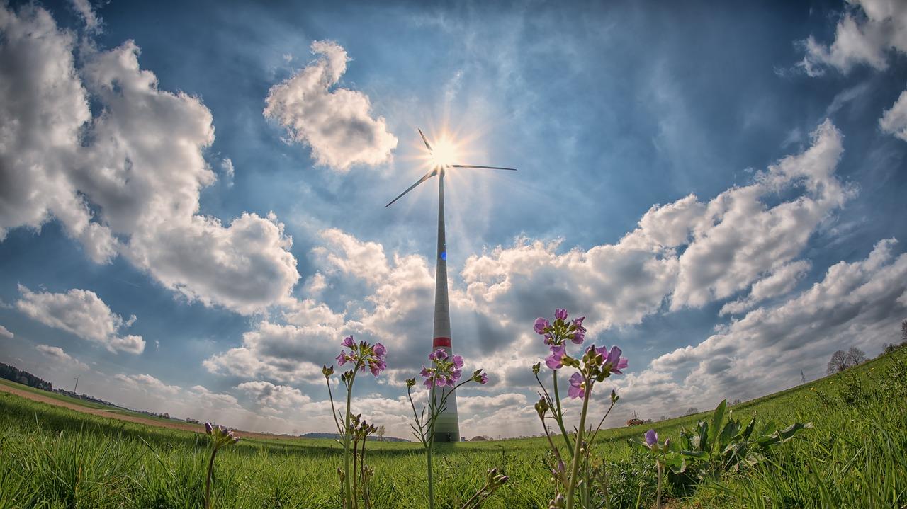 На Львівщині побудують потужну вітроелектростанцію