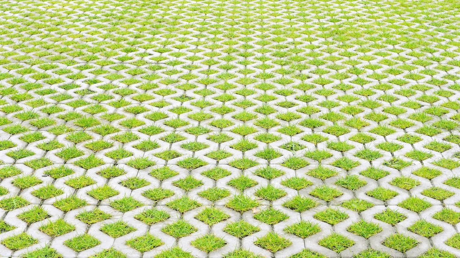 Na Podilli počaly stvorjuvaty ekoparkovky dlja avto