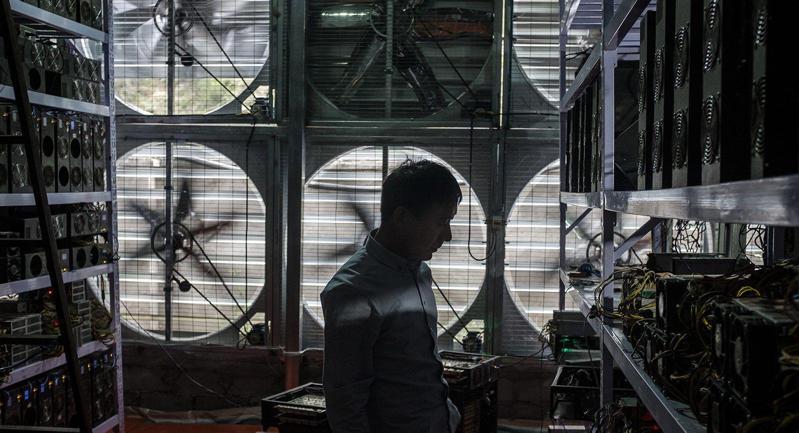 «Весела ферма» — як працюють китайські майнери