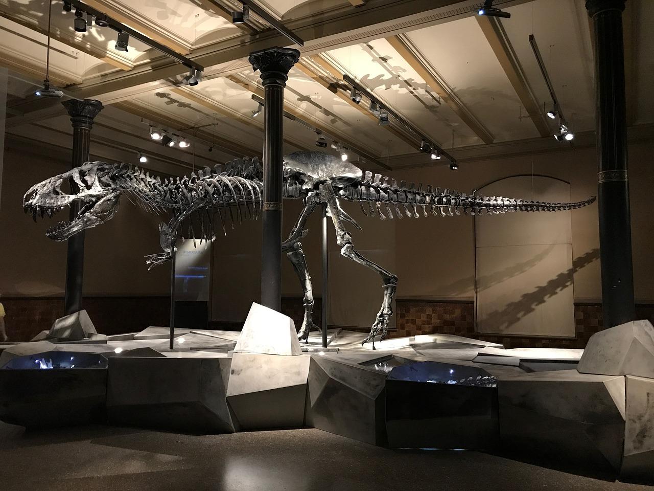 Google proponuje 3D-ekskursiї u muzej u nyzci mist Ukraїny