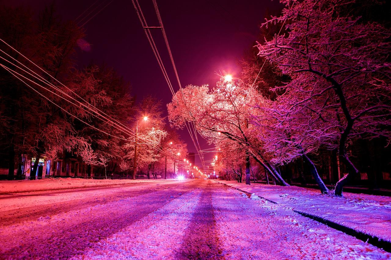 Як нічне освітлення впливає на дерева у мегаполісах