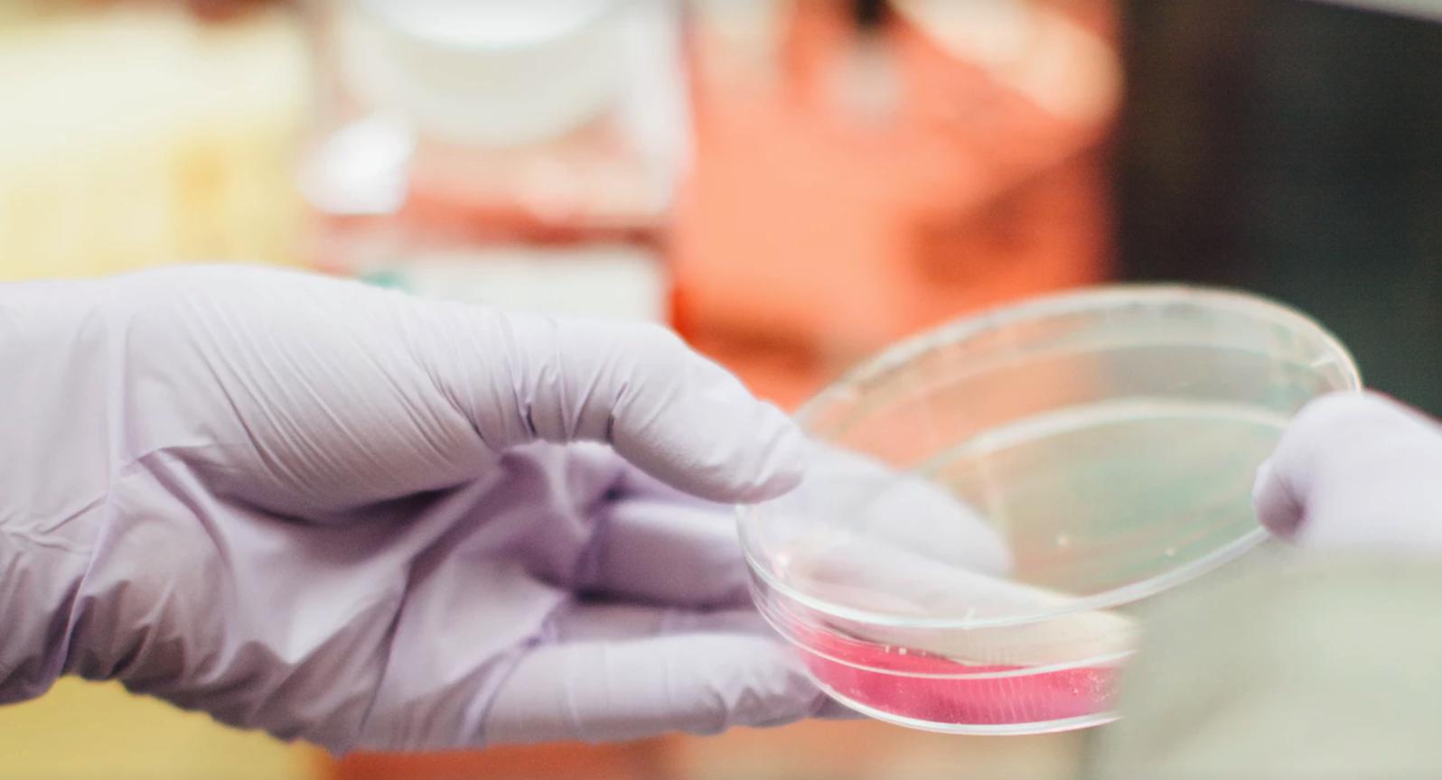 Sequoia Capital інвестує $250 млн в онлайн-сервіс генетичних тестів
