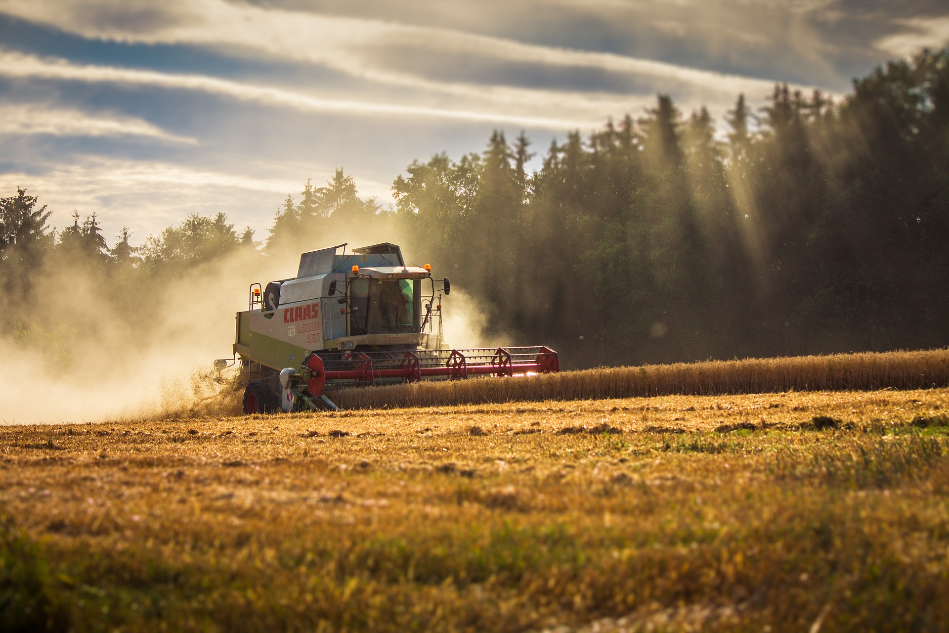 Україна стала шостою серед країн-постачальників агропродукції в ЄС