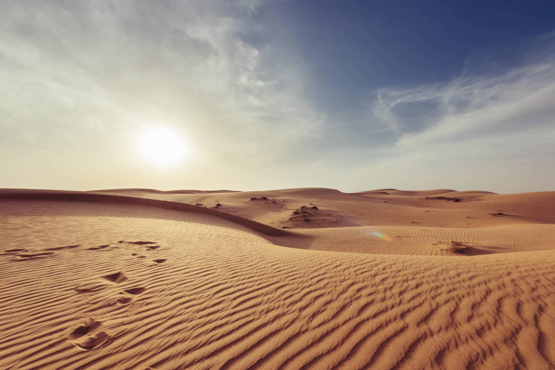 Sonjačnyj park u Sahari žyvytyme energijeju Jevropu