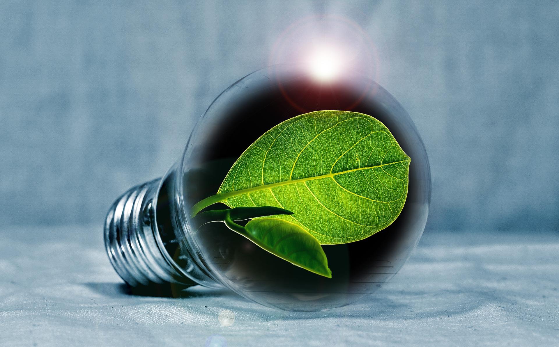 Фінляндія готова інвестувати у виробництво енергії в Україні