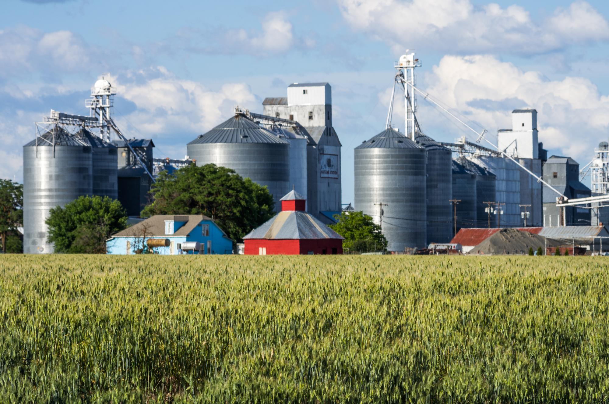U Čerkasah budujuť biotehnologičnyj agroindustriaľnyj park