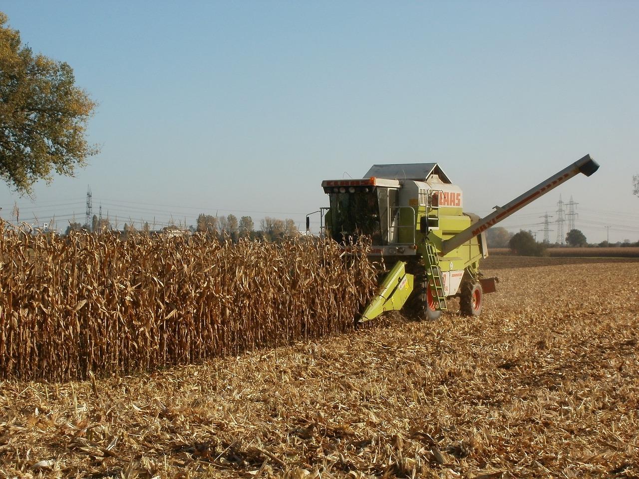 Інвестиції в агросектор в Україні перевищили 40 млрд грн