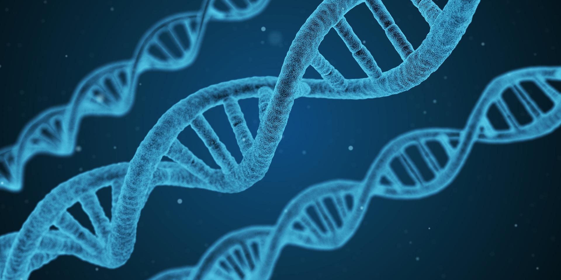 Jak novi tehnologiї dopomagajuť u vyvčenni ljudśkogo genomu