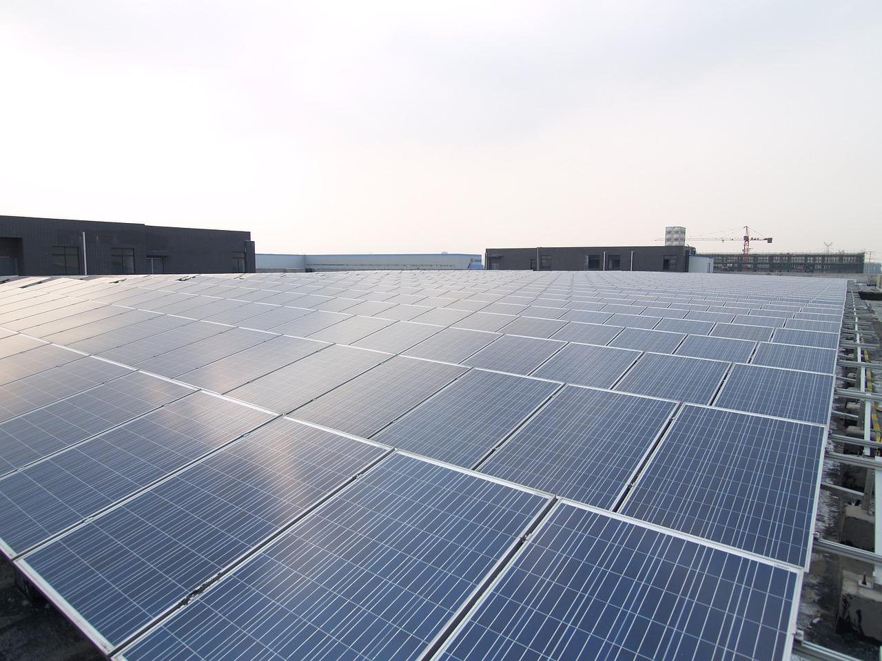 Данія інвестує в будівництво сонячної електростанції на Житомирщині