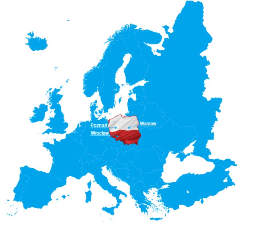 Діджиталізація послуг на прикладі Польщі