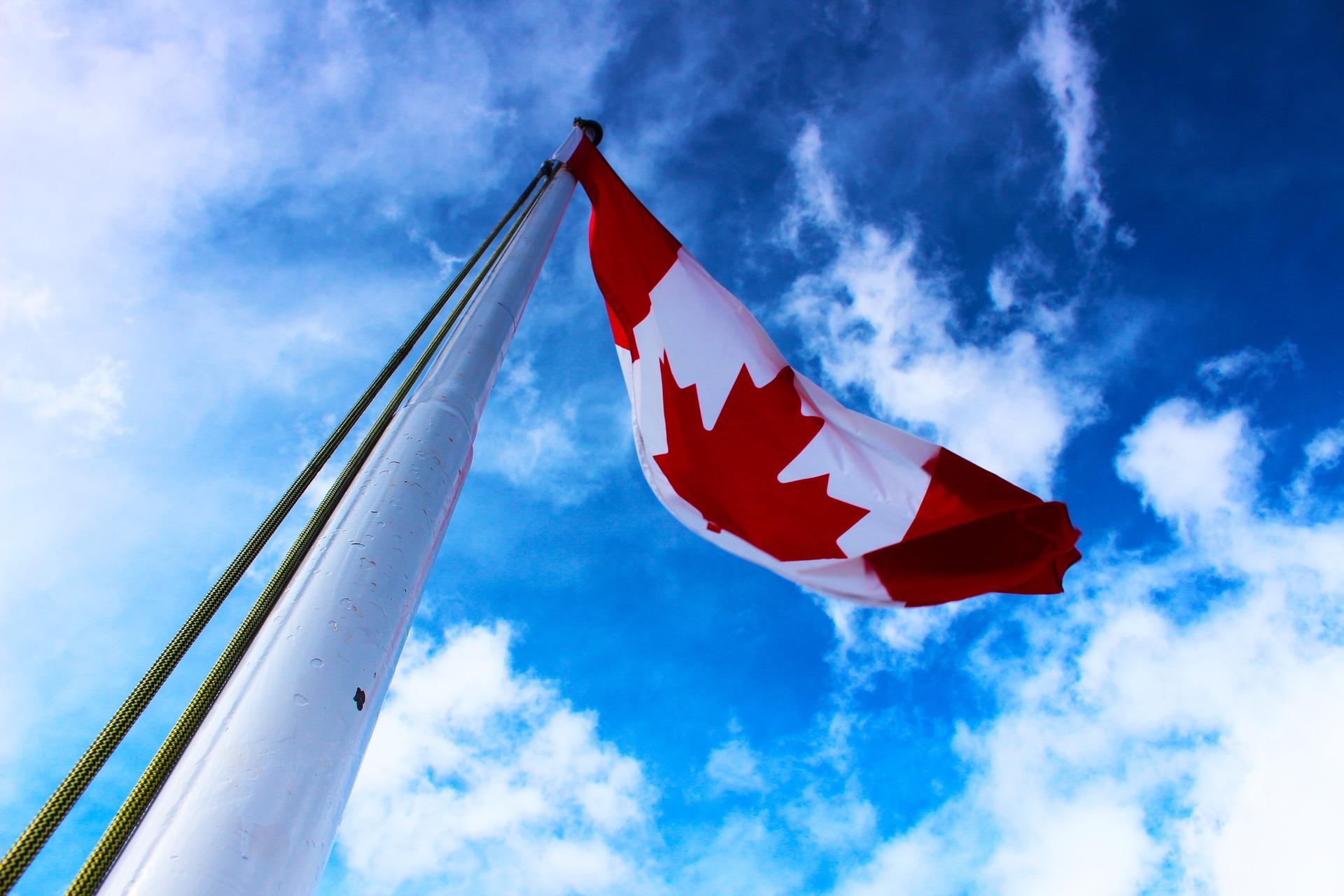 Канадська діаспора пропонує українським ГО грантову підтримку