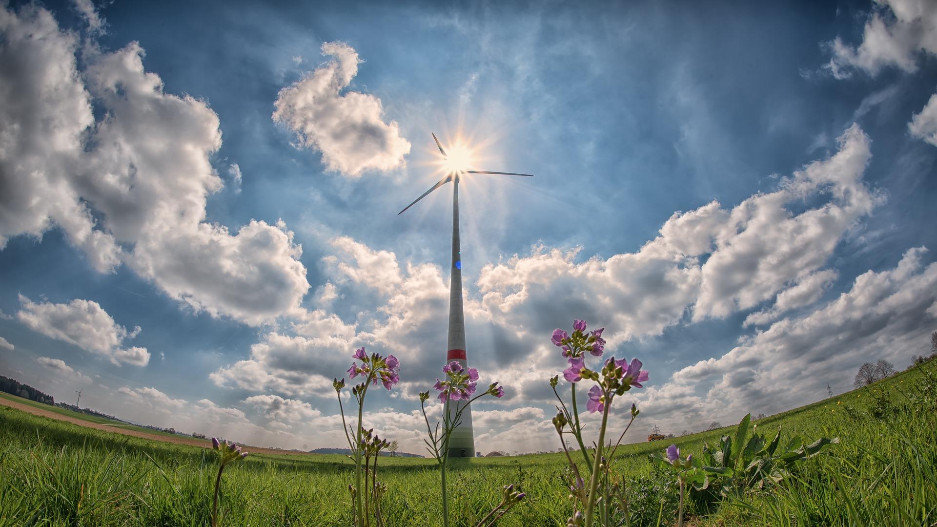 Оприлюдено розмір інвестицій у світову «зелену енергетику» за минулі 5 років