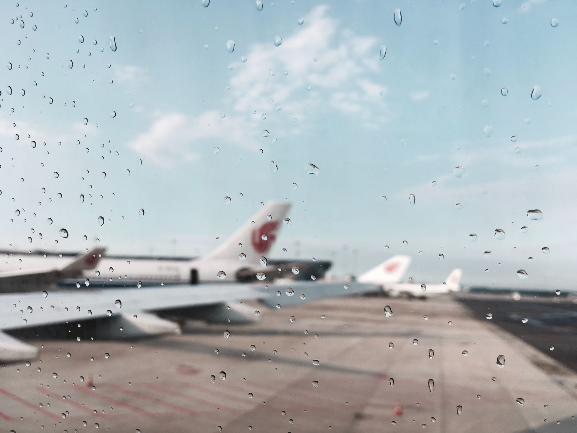 Google Flights povidomljatyme pro zatrymku rejsiv