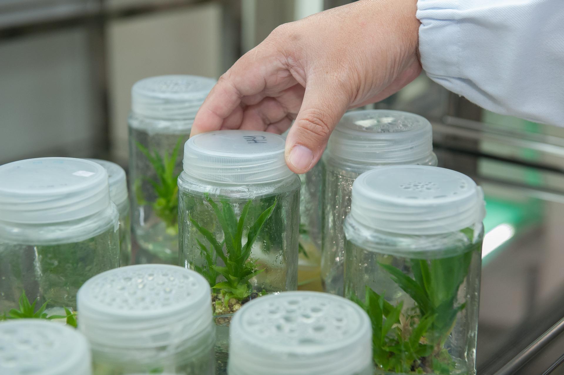 Ukraїnśkyh naukovciv zaprošujuť na seminary iz biotehnologij u SŠA