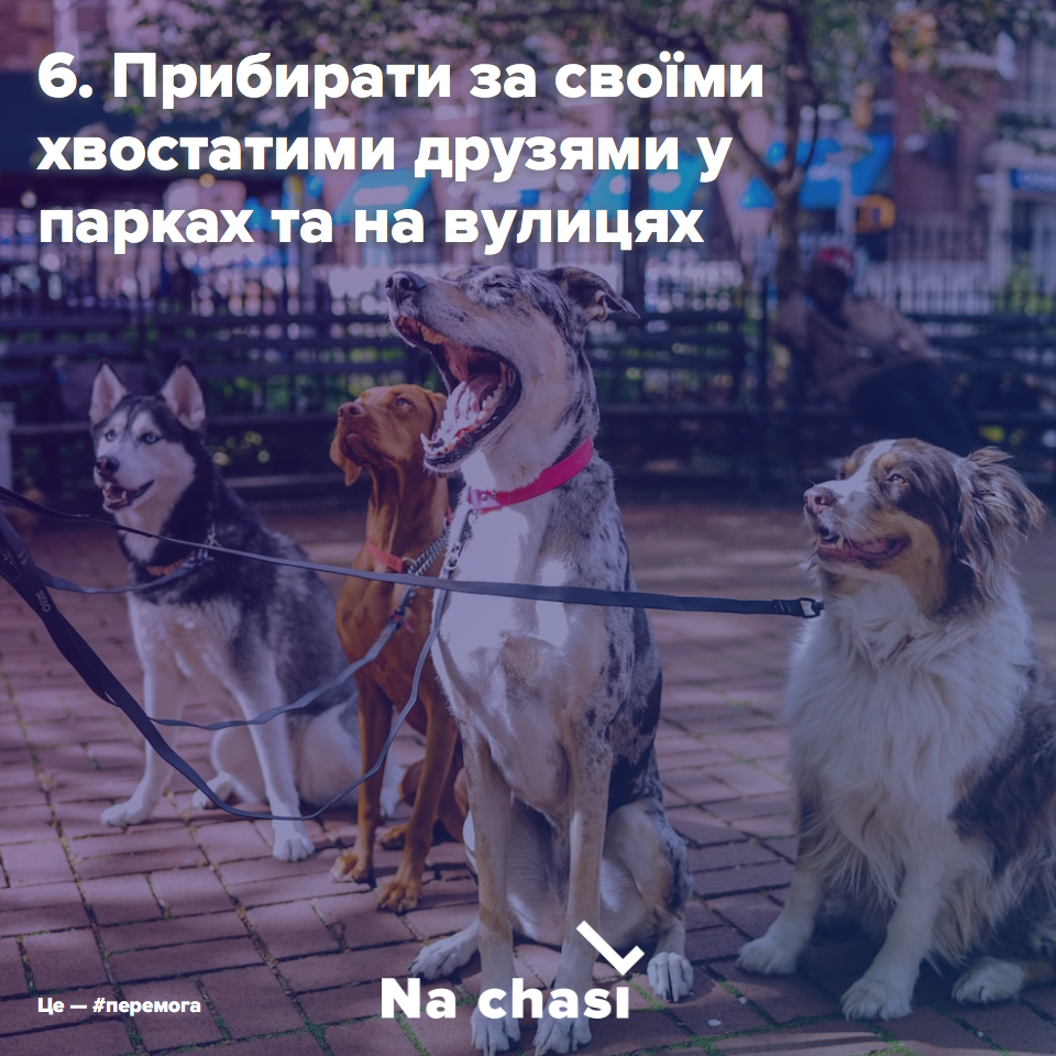 Прибирати каку за своїми собаками в парках