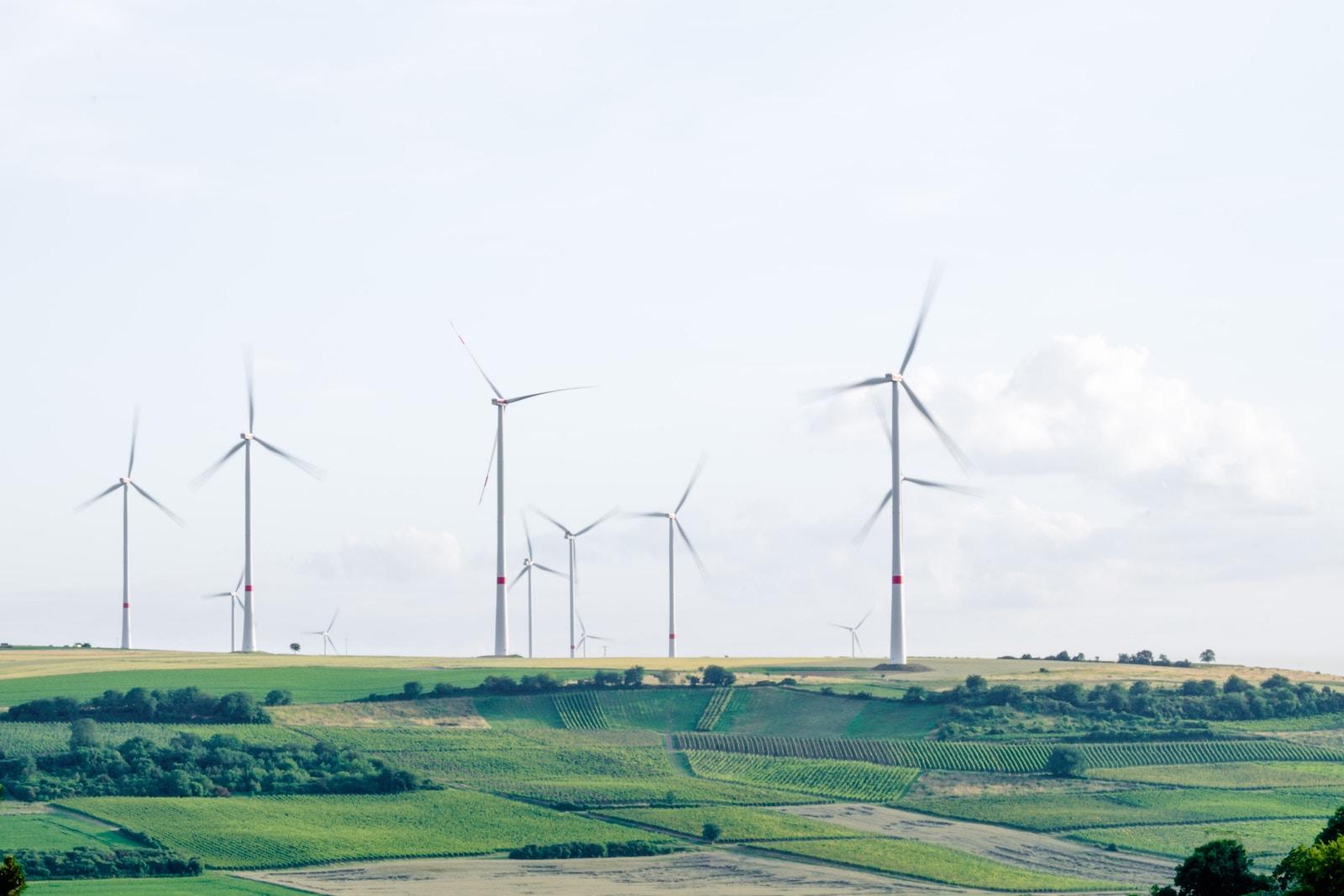 День захисту довкілля: до яких кліматичних угод входить Україна