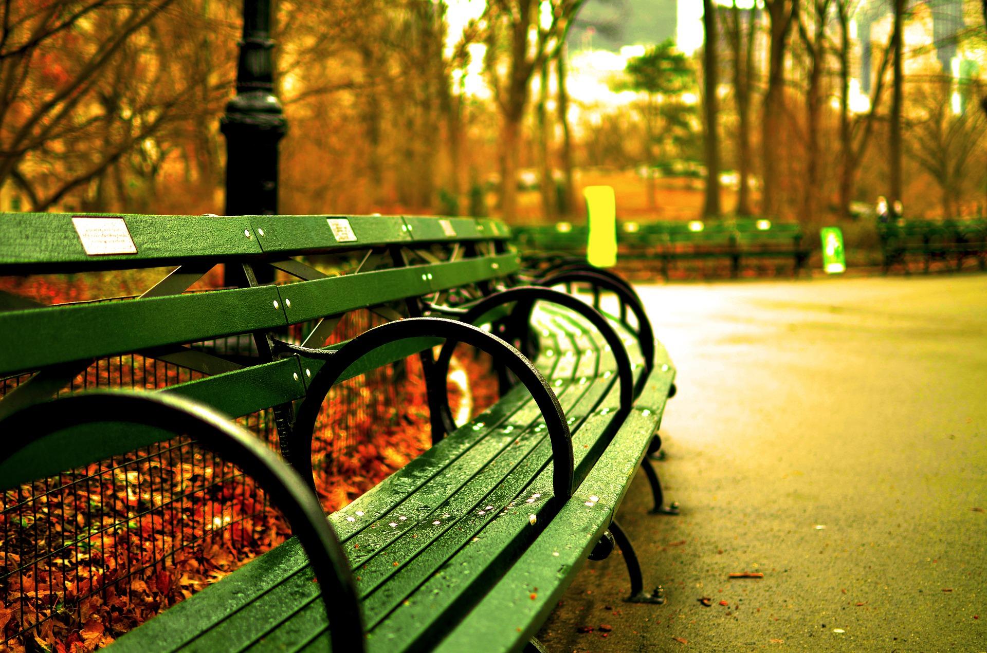 У Києві реконструювали 300 парків та скверів