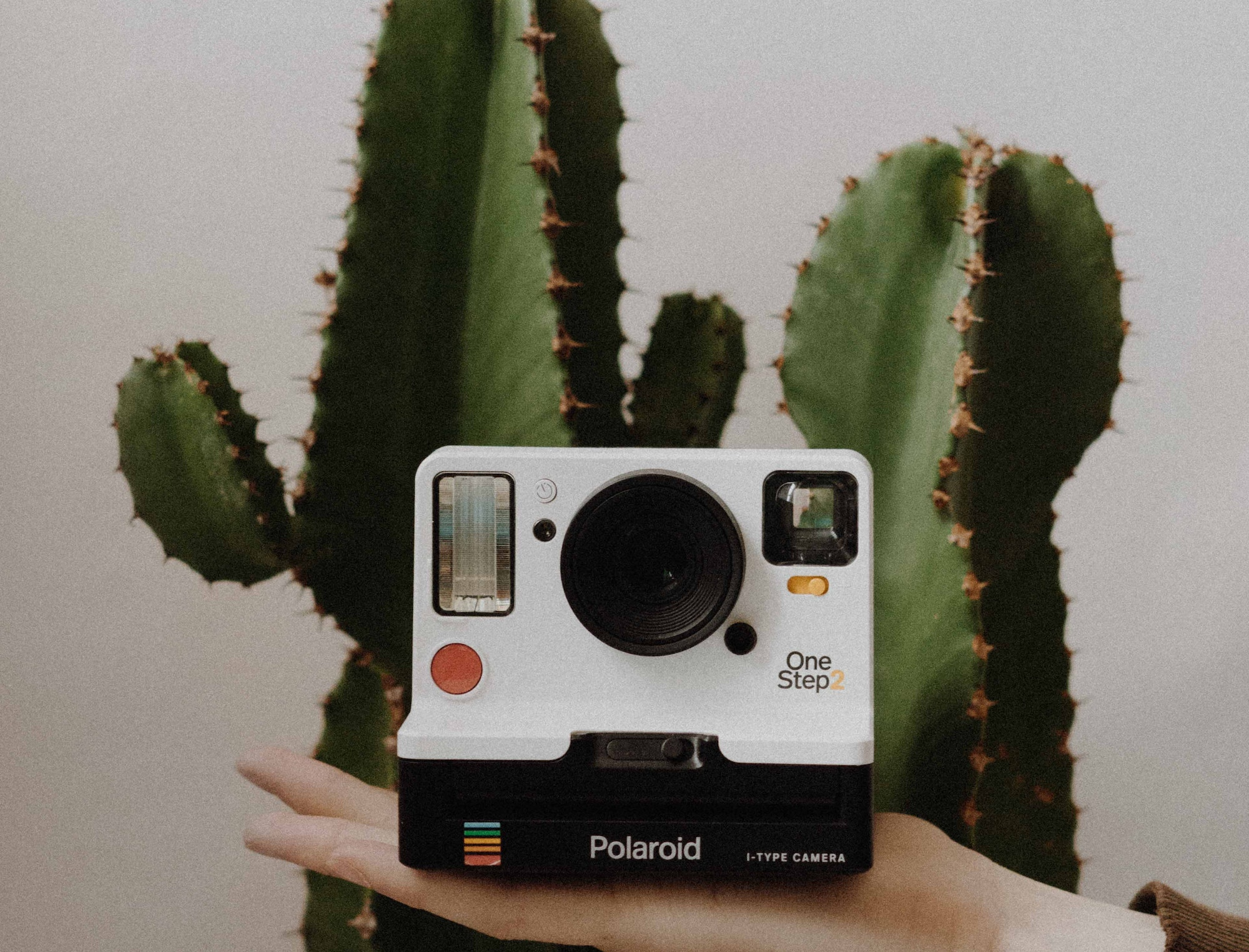 2 роки Instagram Stories — як і чому ми так швидко звикли до «відеоісторій»