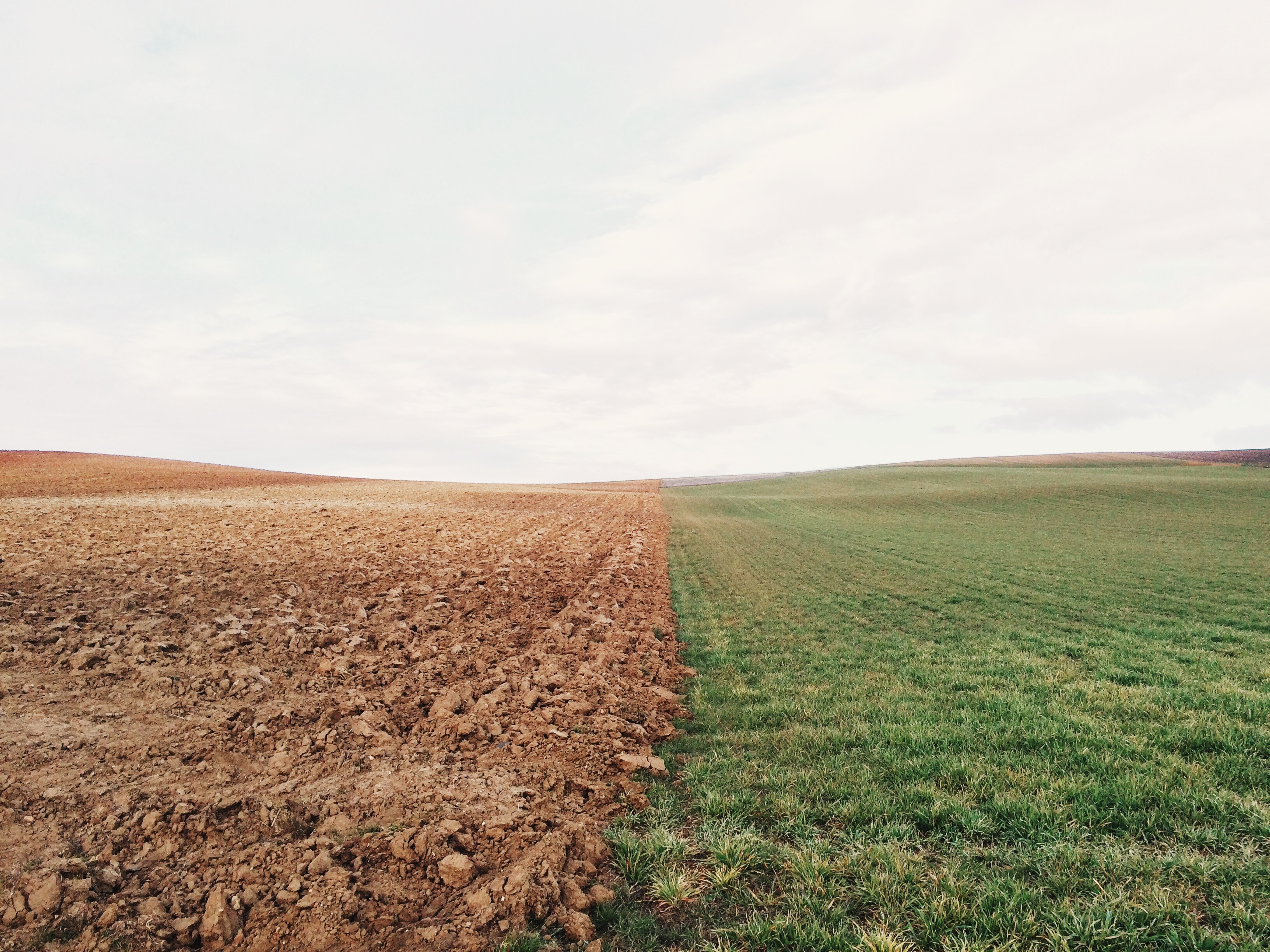 На український ринок вийшов світовий бренд high-tech землеробства