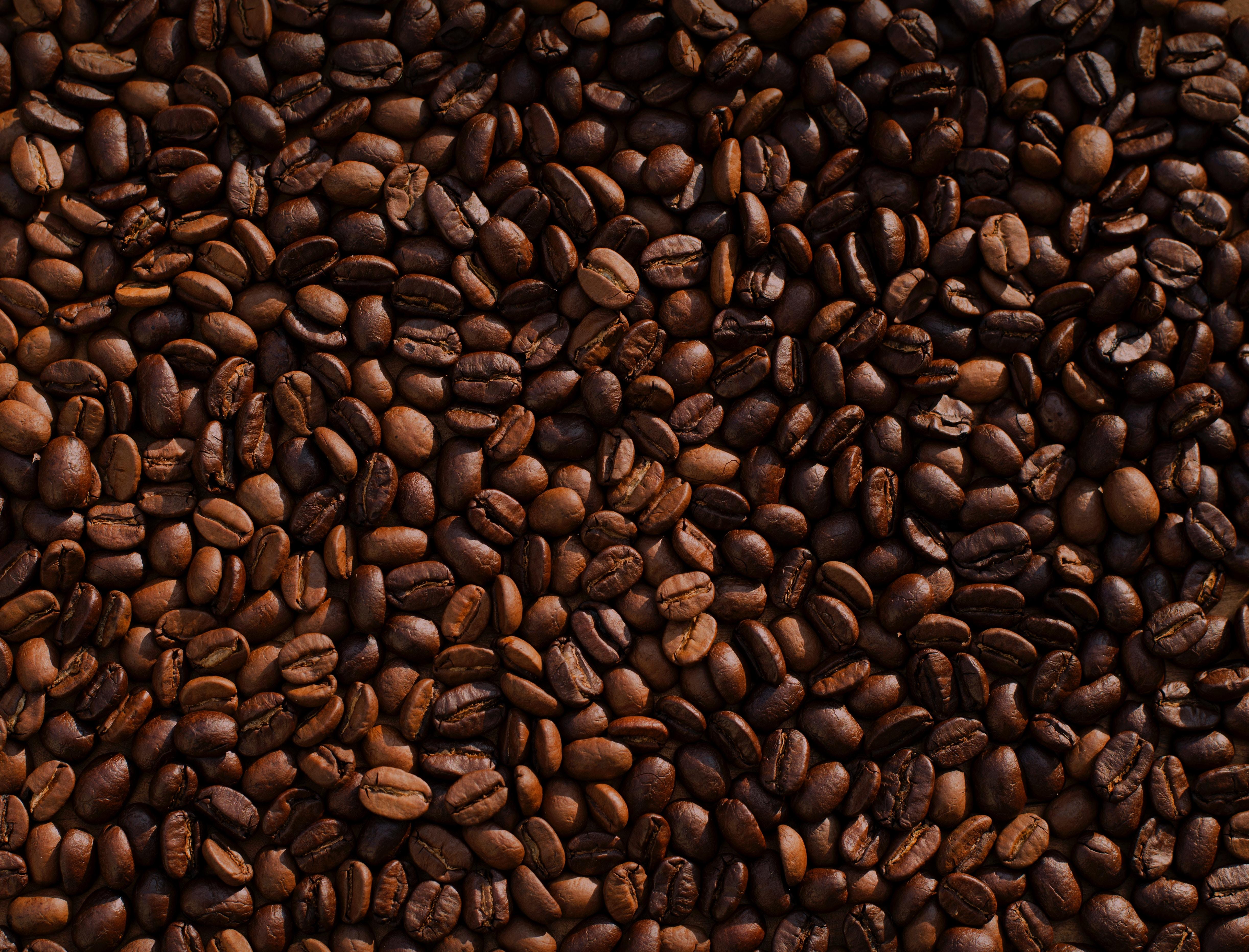 Студія deco запускає телеграм-бота для швидкої доставки кави, шукає партнерів