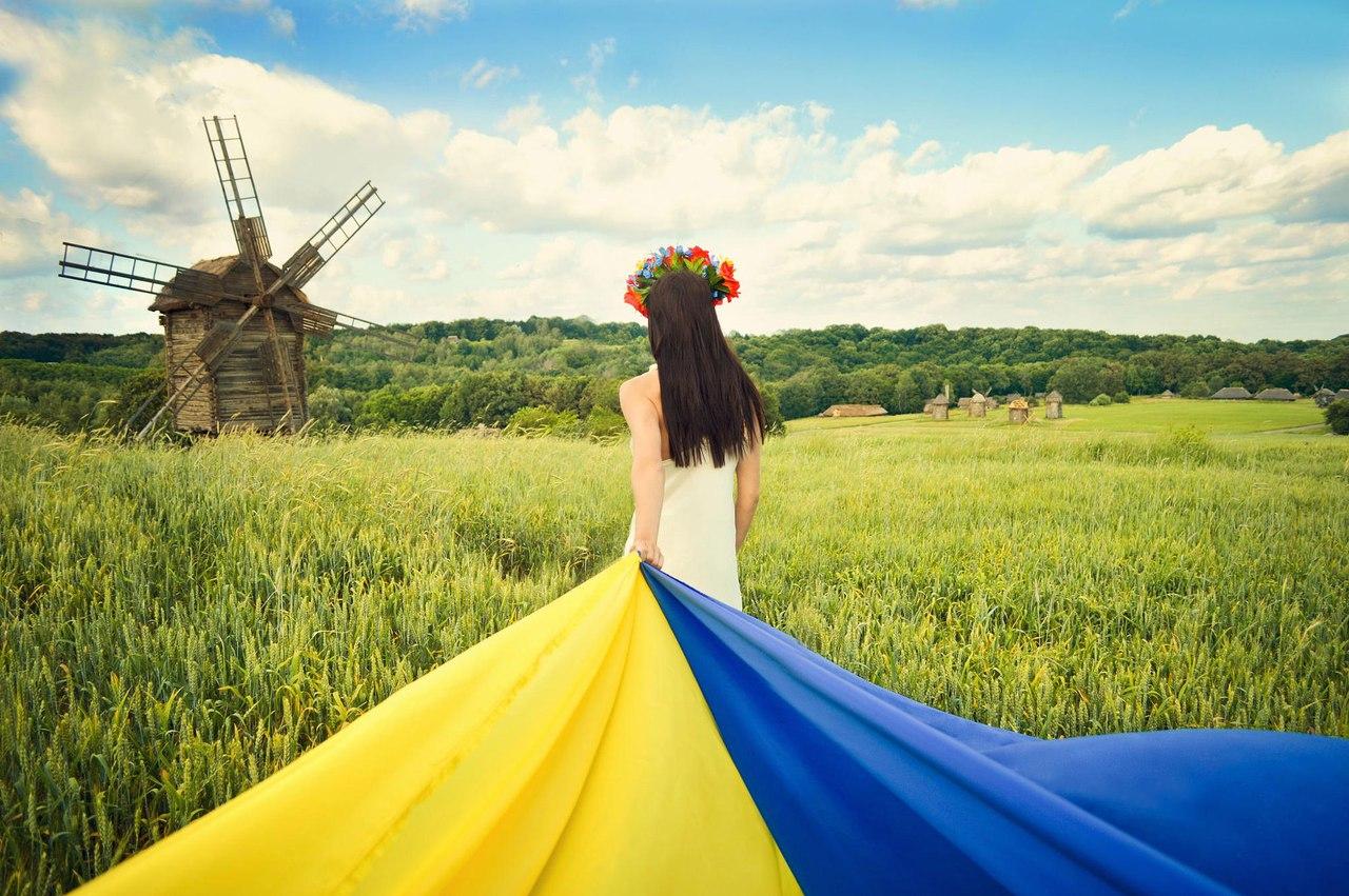 👪 V Ukraїni proveduť elektronnyj perepys: jakyj algorytm ta koly rezuľtaty