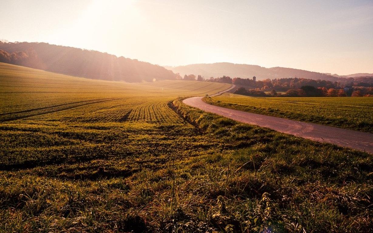 🌱 Рада ухвалила законопроект про зняття мораторію на продаж землі у першому читанні
