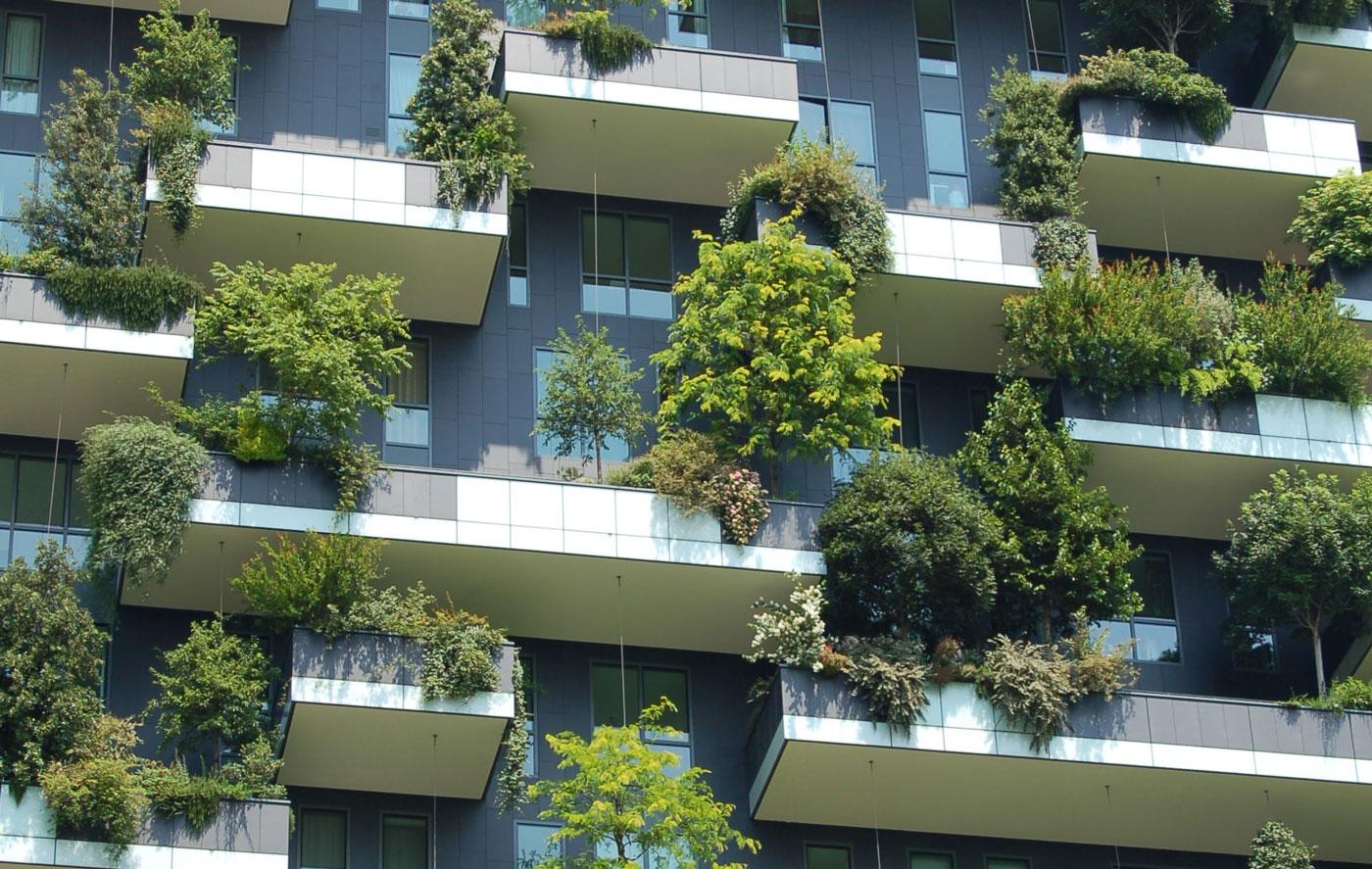 🌱 CO2, глобальне потепління та буряки: як ціла компанія може стати eco-friendly