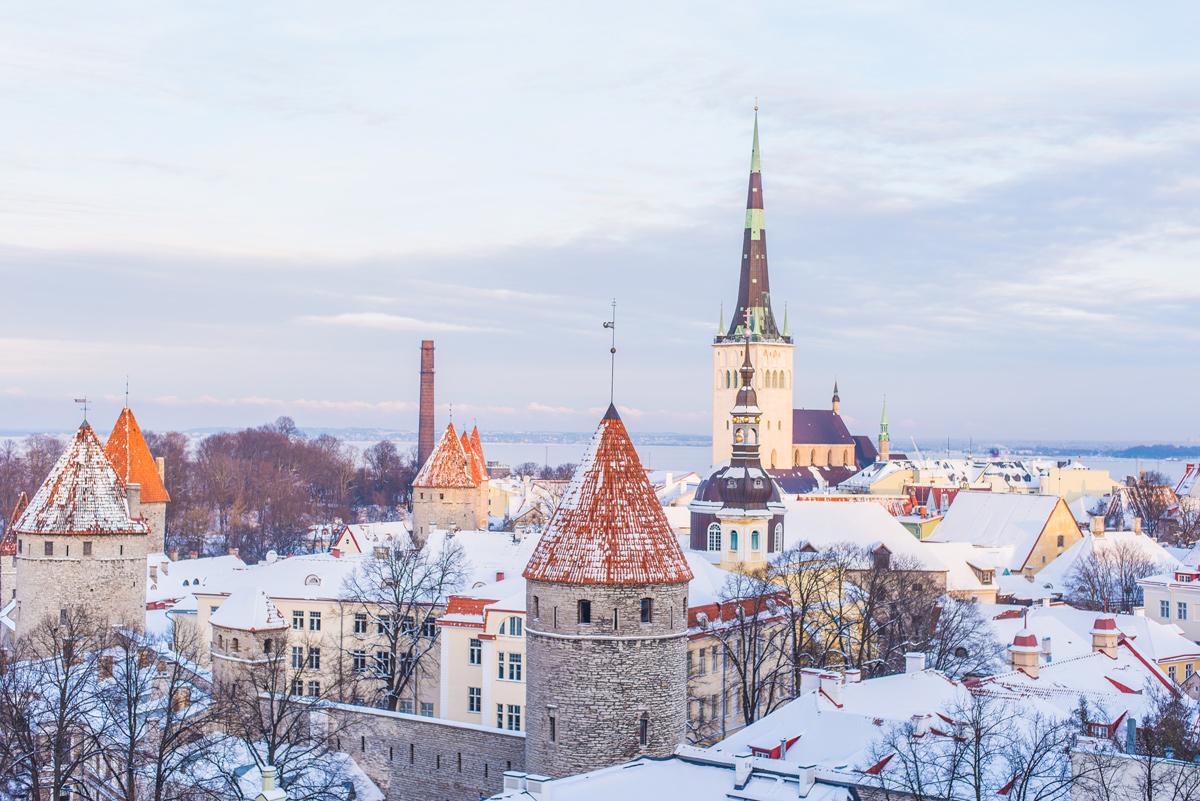 🇪🇪 Естонія приймає заявки на першу візу для цифрових кочівників