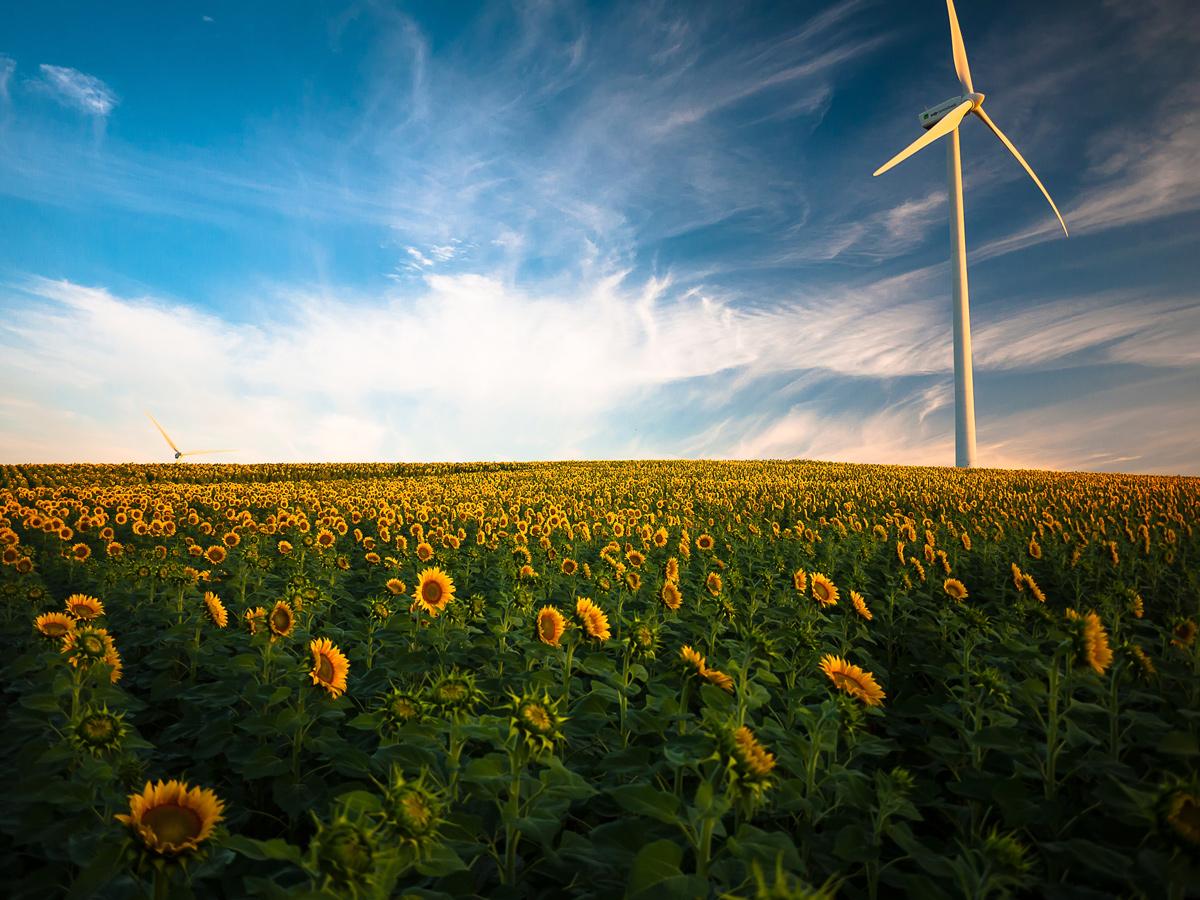 🔌 Bloomberg: виробництво відновлювальної енергії в світі подвоїлося за останні 5 років