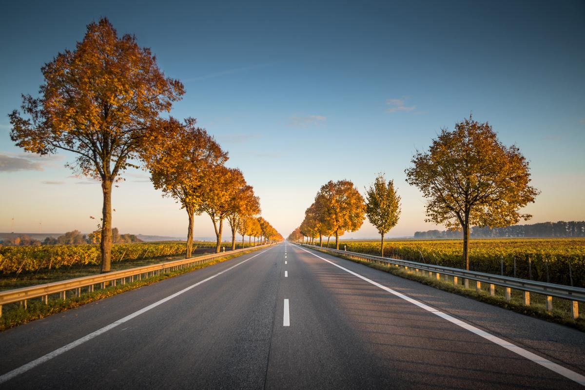 🛣 Дослідження: дорожнє покриття з перероблених матеріалів є екологічнішим на 19%