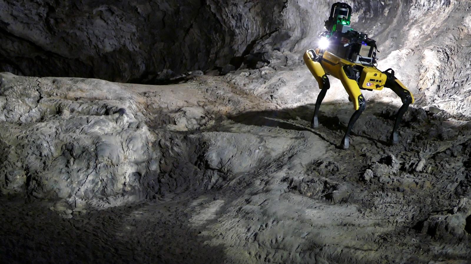 🐕 NASA відправить на Марс зграю робопсів