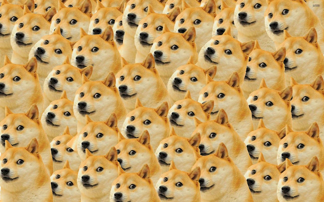 🐶 Binance оголосили конкурс на $100 тис в DOGE