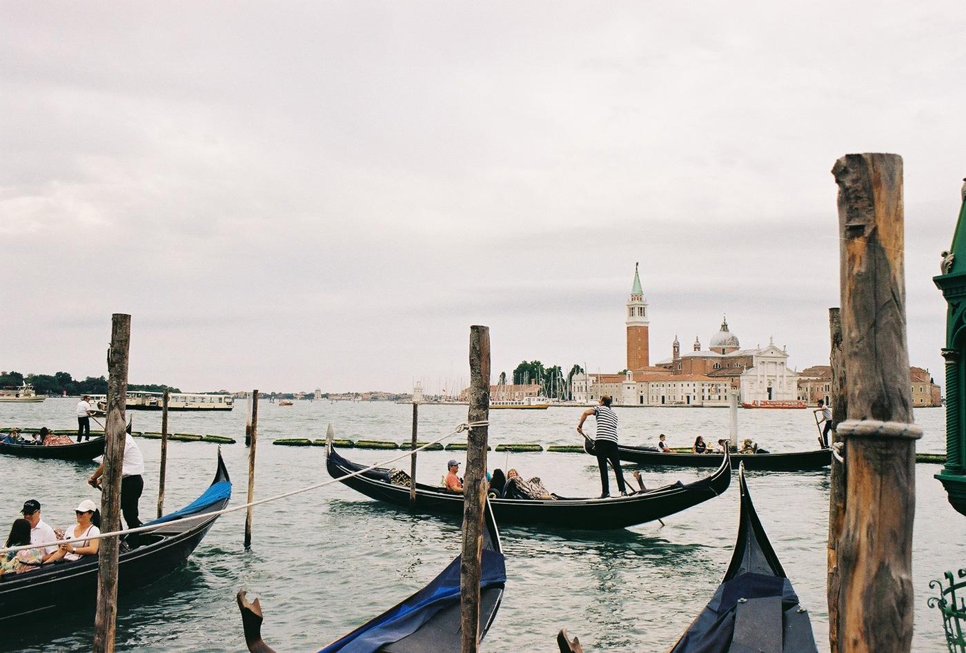 🐬 Канали Венеції настільки очистились, що до них повернулись дельфіни. Цього разу точно — відео