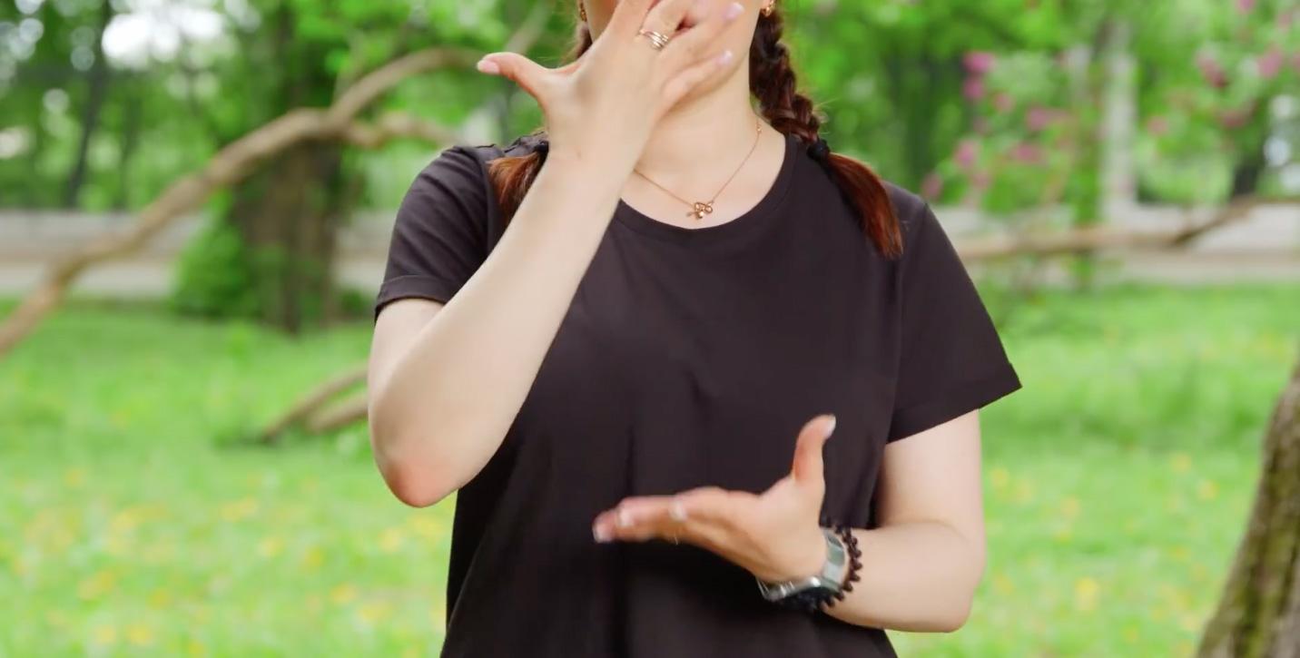 👍🏻 Pisnju Go_A «Šum» pereklaly movoju žestiv: dyviťsja video